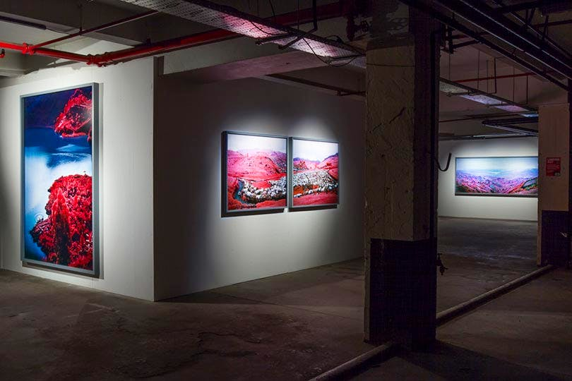 'Richard Mosse – The Enclave' (installation view at the Vinyl Factory)