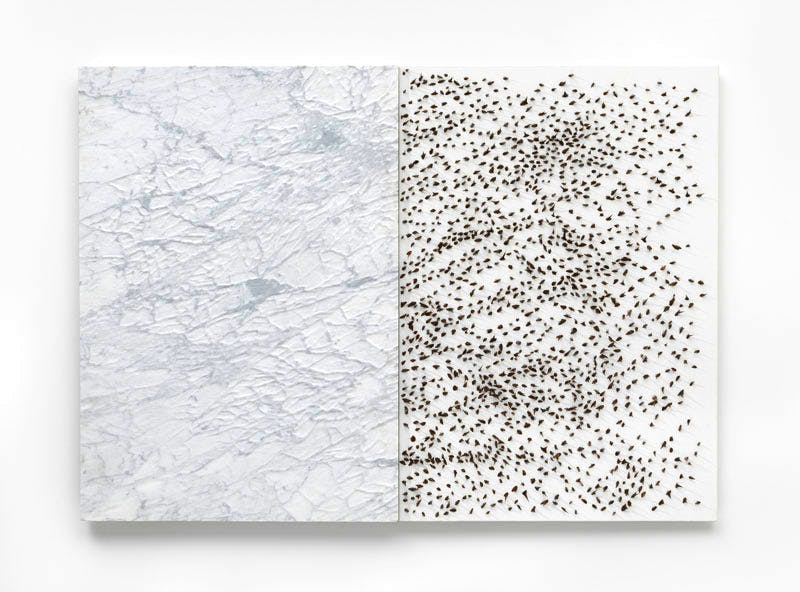 Giuseppe Penone, (2006), Carrara marble,canvas, acrylic, glass microspheres, acacia thorns  39 3/8 x 55 1/8 x 2 3/8 inches 100 x 140 x 6 cm