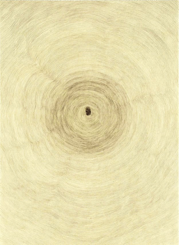 Giuseppe Penone (1994), Pencil, ink on Japanese paper and wall drawing, 39 3/8 x 55 1/8 x 2 3/8 inches, 66 x 48.1 cm