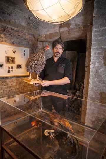 Koen Vanmechelen at The Crypt Gallery, St Pancras Church