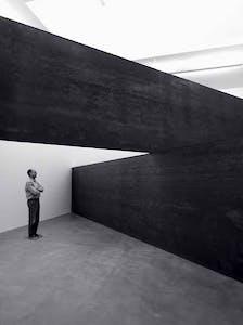(2014), Richard Serra