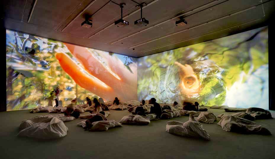 Installation view 'Pipilotti Rist. Worry Will Vanish', Hauser & Wirth London (2014)
