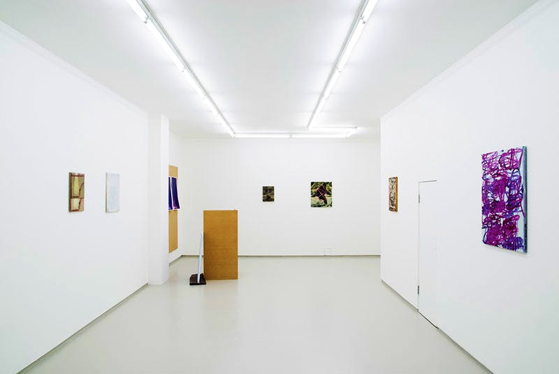'Promise of Palm Trees' (installation view; January 2015)