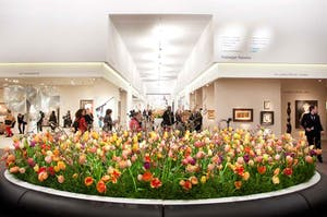 It's all eyes on Maastricht as TEFAF opens for business.