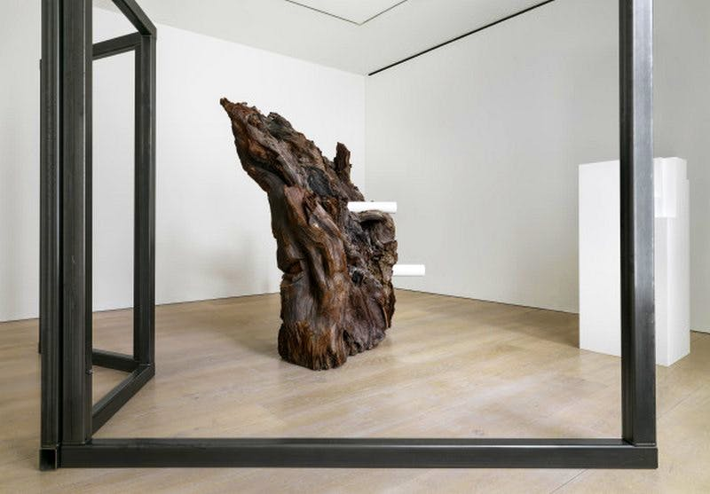 Installation view from the 2015 solo exhibition 'Carol Bove: The Plastic Unit' at David Zwirner, London.