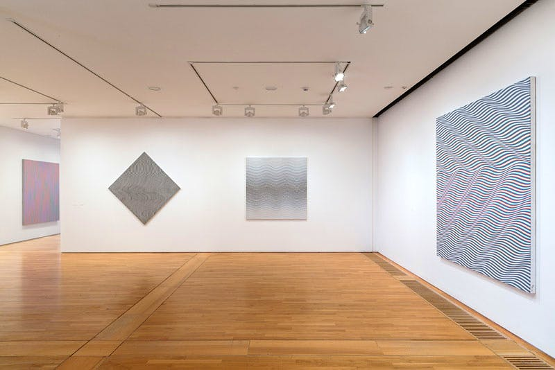 'Bridget Riley: The Curve Paintings, 1961-2014' (installation view)