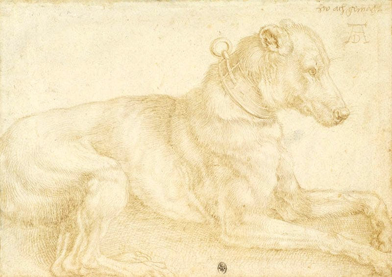 (1520), Albrecht Dürer (1471–1528)