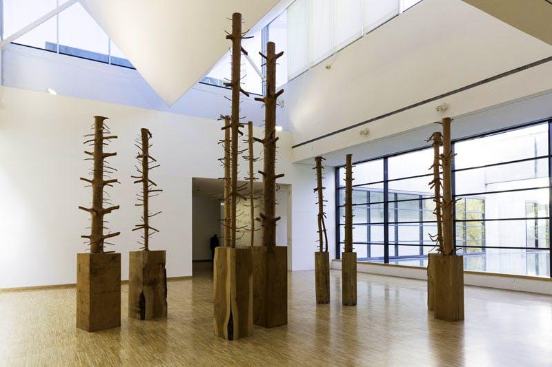 (1980-2014), Giuseppe Penone. Installation view, Musée de Grenoble 2014.