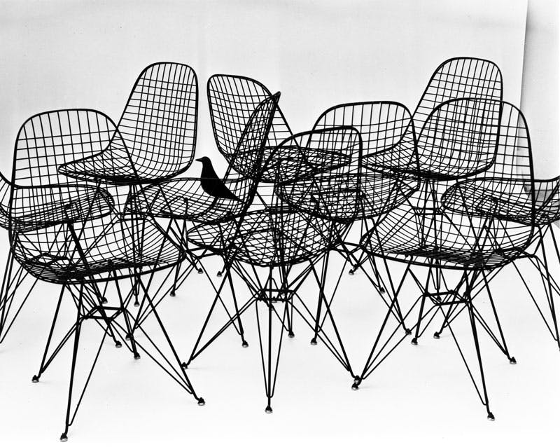 Wire Chairs with bird (1953)