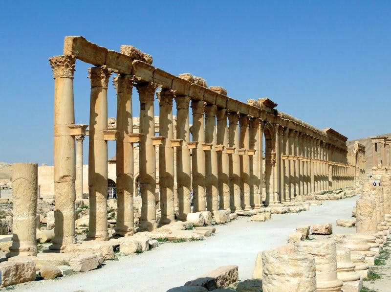 Columns in Palmyra. Source : Wikimedia Commons