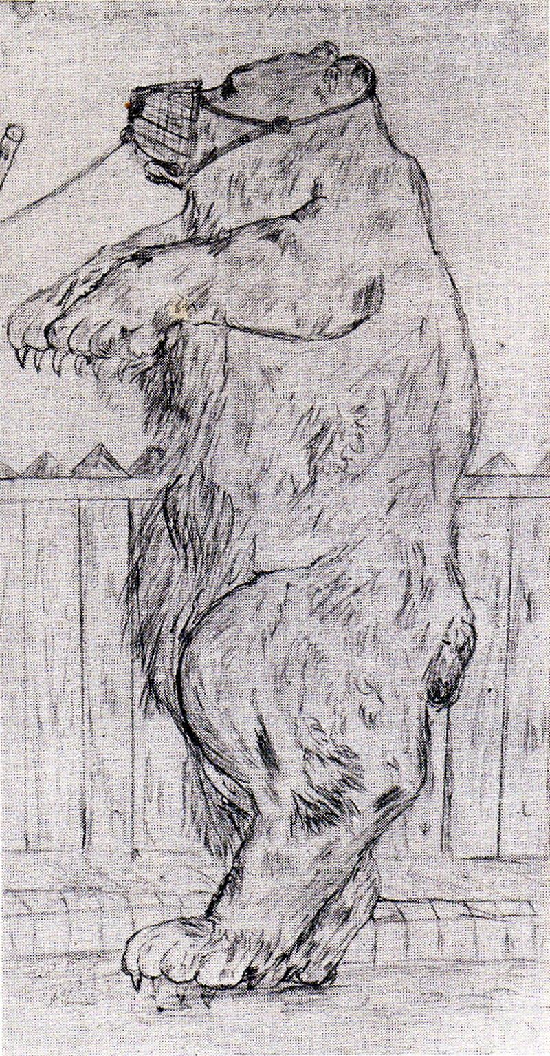 (1902), David Jones.