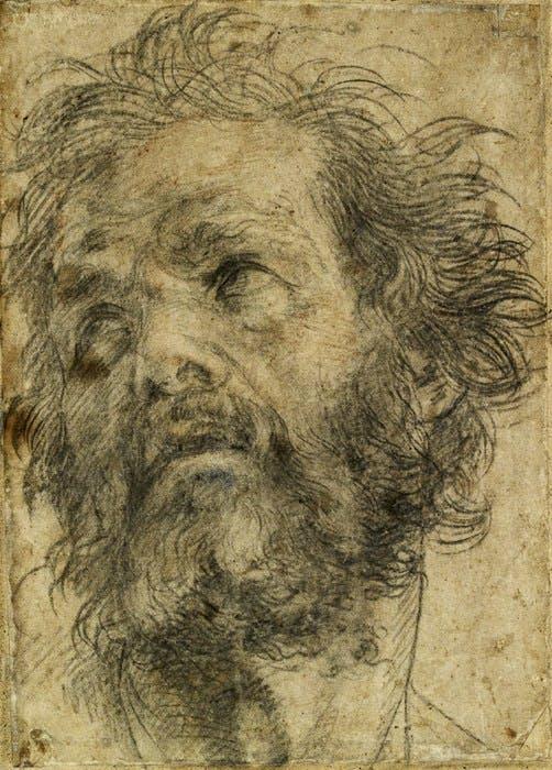 Andrea del Sarto's perfect chalk drawings | Apollo Magazine