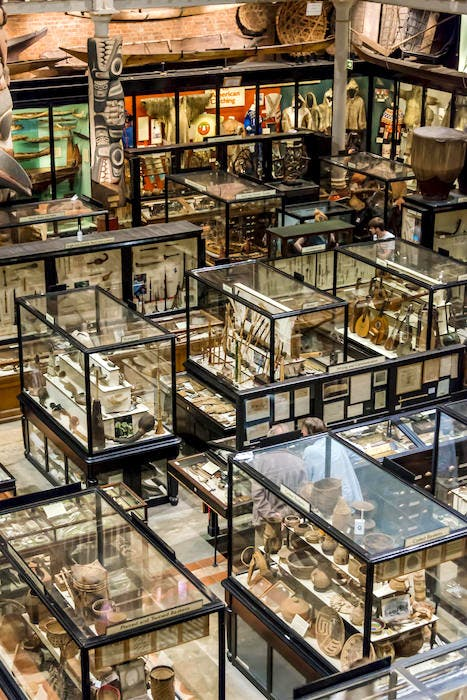 A display of the archaeological and anthropological collections at the Pitt Rivers Museum, University of Oxford. © LatitudeStock/Alamy Stock Photo