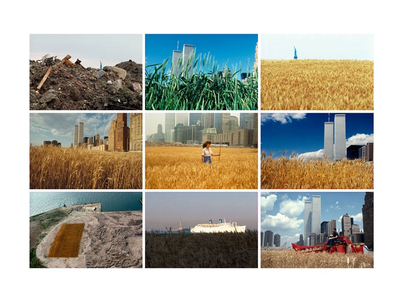 Wheatfield – A Confrontation: Battery Park Landfill, Downtown Manhattan (composite)