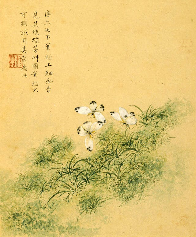 Butterflies among Fragrant Grasses, in the Style of Tang Yin from the album 'Flowers'