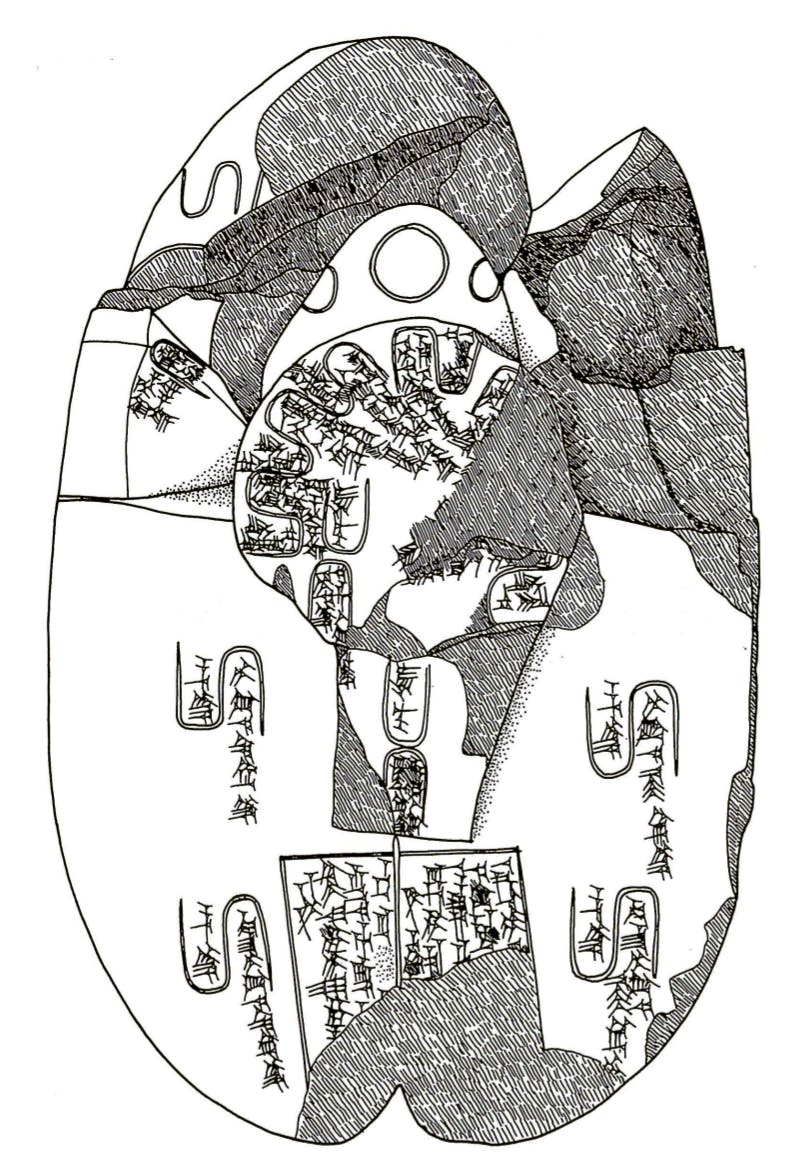 Plate 36 from Literary Texts from the Temple of Nabu, showing a model of a liver used for interpreting omens