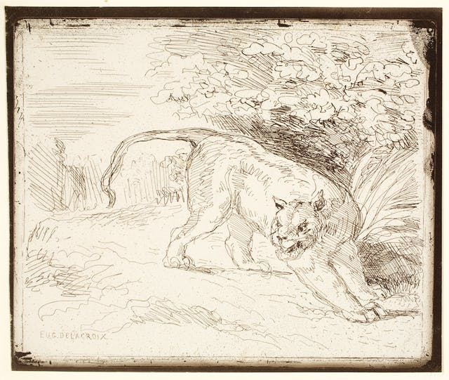 Tiger at Bay, plate 36 of 40 from the portfolio Forty Clichés Verre
