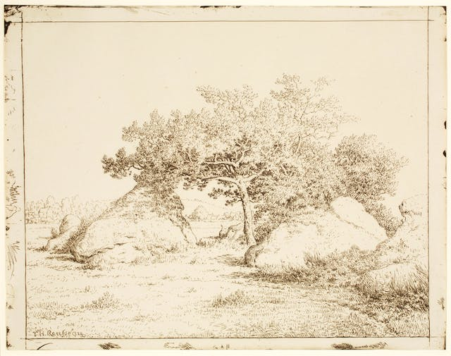 Cherry Tree at Plante-à-Biau, plate 39 of 40 from the portfolio Forty Clichés Verre