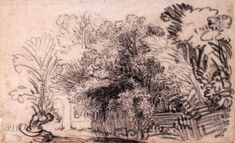 A clump of trees in a fenced enclosure (c. 1645), Rembrandt. British Museum