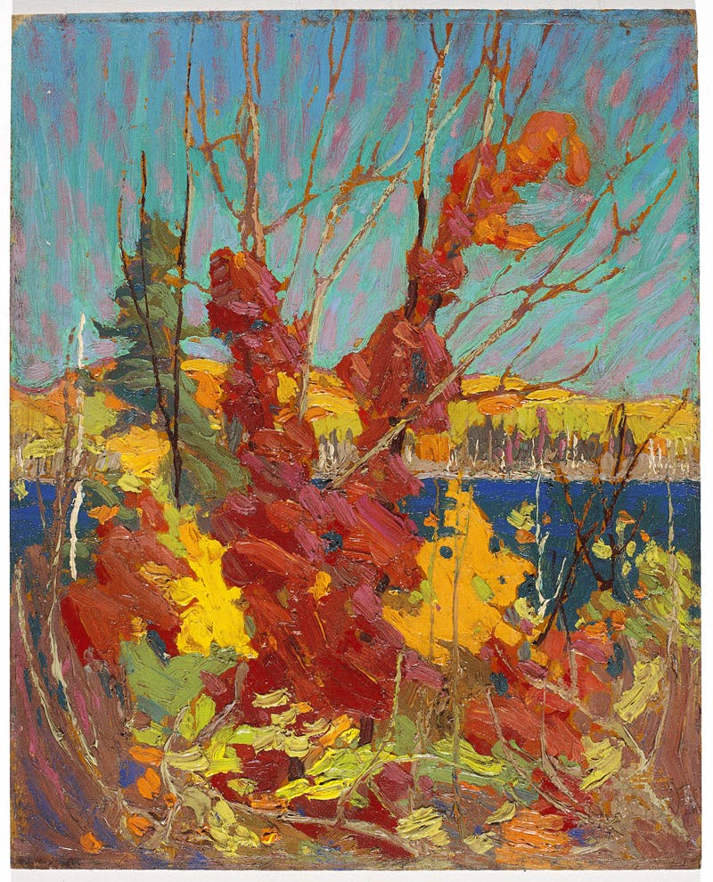 Autumn Foliage (1916), Tom Thomson. The National Gallery of Canada, Ottawa
