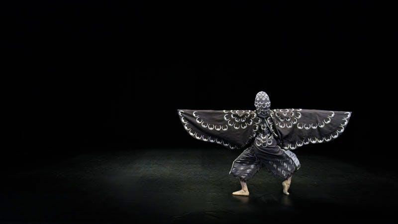 Still from At Twilight / The Hawk's Dance