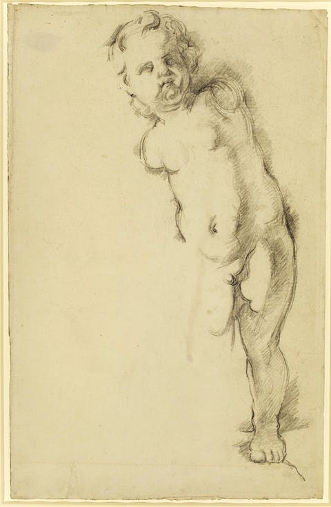 Study of a Plaster Cupid