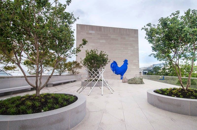The new roof terrace of the National Gallery of Art East Building. Several sculptures are on view, including Hahn/Cock (2013) by Katharina Fritsch, on long-term loan from Glenstone Museum, Potomac, Maryland. Artists Rights Society (ARS), New York/VG Bild-Kunst, Bonn.Photo by Rob Shelley© 2016 Board of Trustees, National Gallery of Art, Washington