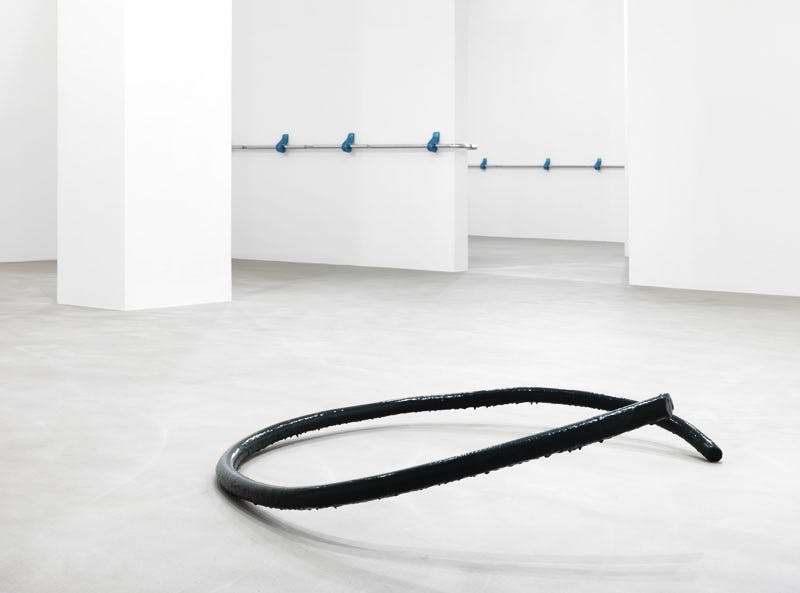 Beliebte Stellen/Privileged Points (2015), Nairy Baghramian