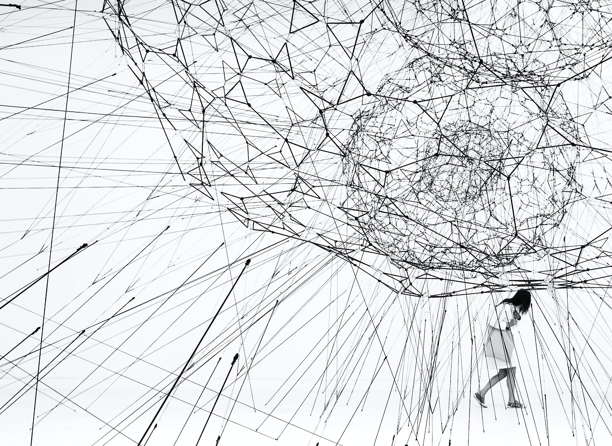 Galaxies Forming along Filaments, like Droplets along the Strands of a Spider's Web, Tomás Saraceno