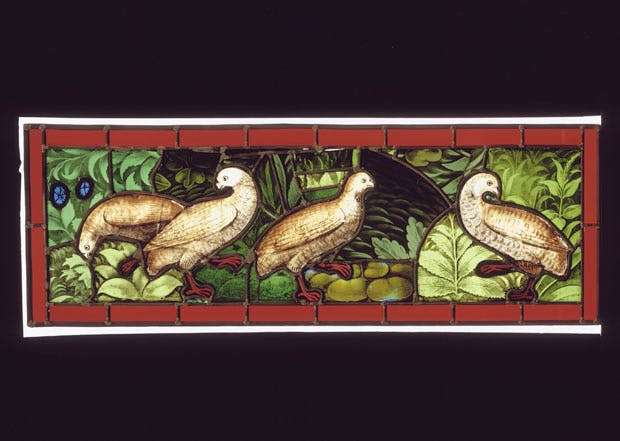 Stained glass window with partridges