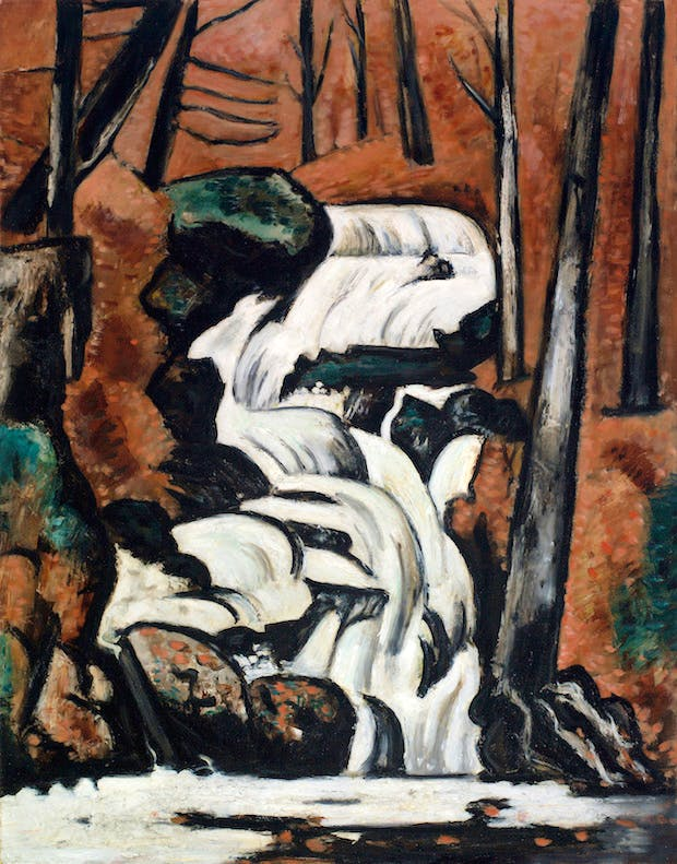 Smelt Brook Falls (1937), Marsden Hartley. Saint Louis Art Museum
