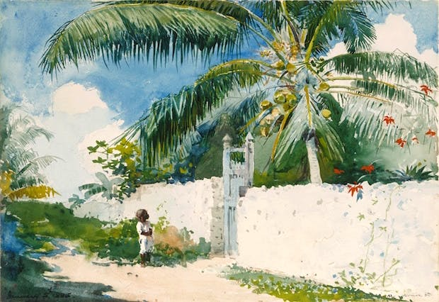 A Garden in Nassau (1885), Winslow Homer. Courtesy of Philadelphia Museum of Art
