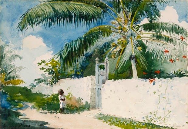 A Garden in Nassau (1885), Winslow Homer. Courtesy of Philadelphia Museum of Art
