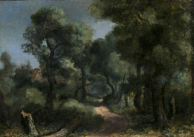 Woodland Path (c. 1618-20), Hercules Segers. Private Collection