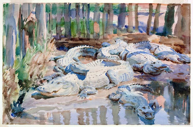 Muddy Alligators (1917), John Singer Sargent. Worcester Art Museum, Sustaining Membership Fund