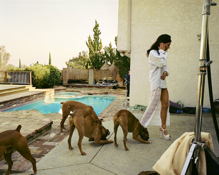 Boxers, Mission Hills (from the series The Valley; 1999), Larry Sultan. © Estate of Larry Sultan; photo: courtesy the Estate of Larry Sultan
