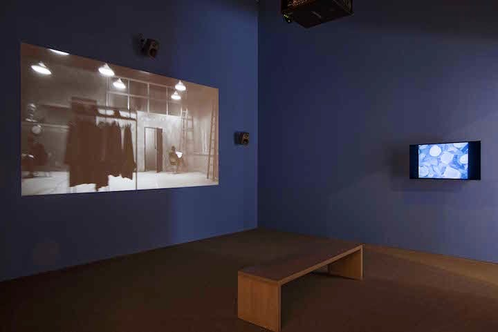Installation view of Harmony of Difference, Kasami Washington (2017). Photograph: Bill Orcutt, collection of the artist