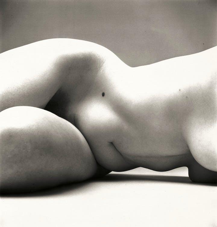 Nude No. 72, New York, 1949–50 Irving Penn. © The Irving Penn Foundation