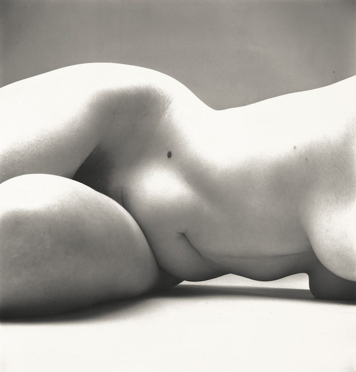 Nude No. 72, New York, 1949–50 Irving Penn. © The Irving Penn Foundation