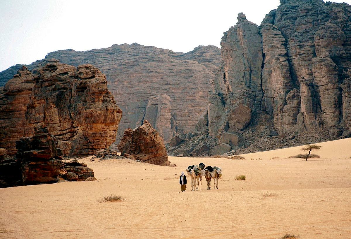 Tassili n'Ajjer in south-east Algeria. Photo: Wikimedia Commons