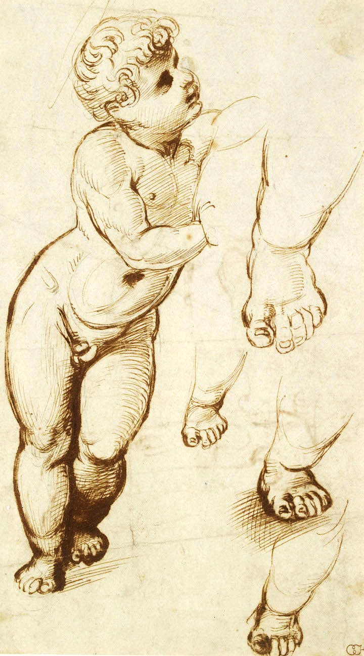 Studies for the figure of Christ (c. 1507), Raphael. © Ashmolean Museum, University of Oxford