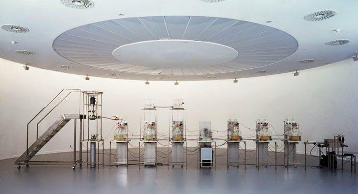 Cloaca Original (2000), Wim Delvoye, installation view at M HKA, Antwerp, 2000. Courtesy Studio Wim Delvoye, Belgium