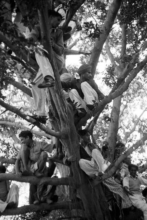 Crowds wait for Gandhi's funeral cortege to pass by on its way to the Sumna river (1948), Henri Cartier-Bresson. © Henri Cartier-Bresson/Magnum Photos