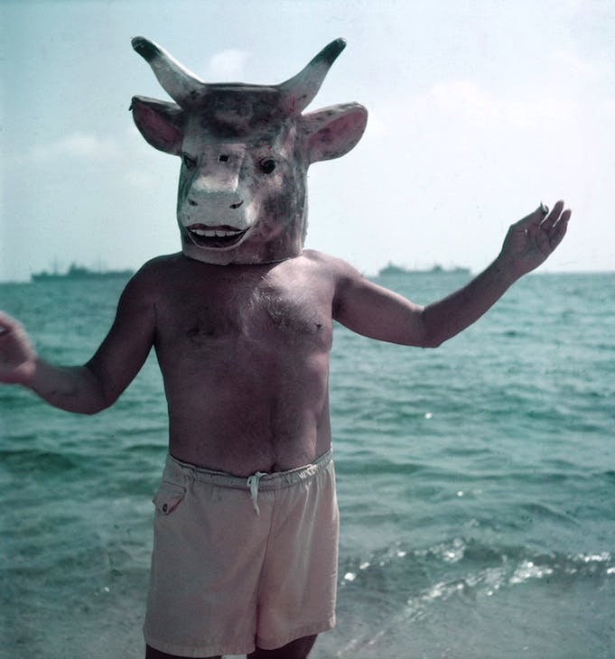 Picasso wearing a bull's head intended for bullfighters' training, La Californie, Cannes (1959). Photo: Gjon Mili/Time and Life Pictures/Getty Image; Courtesy Gagosian; © 2017 Estate of Pablo Picasso / Artists Rights Society (ARS), New York