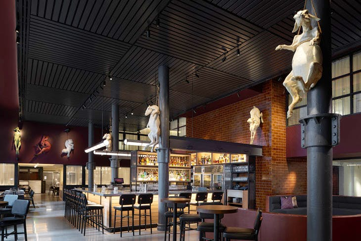 Spanish Feral Meat Goats and Emotions, part of 'Menagerie' installed at Gray & Dudley Restaurant, 21c Museum Hotel Nashville. Photo: Mike Schwartz. Courtesy 21c Museum Hotels