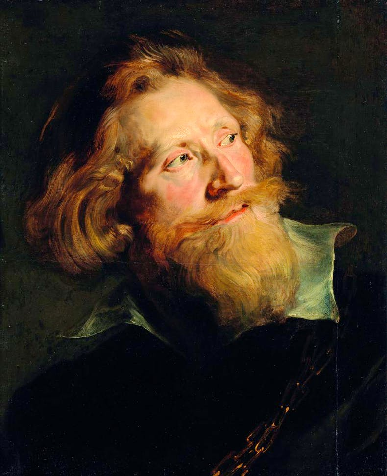 Head of a Bearded Man, (1622–24), Peter Paul Rubens, National Gallery of Ireland