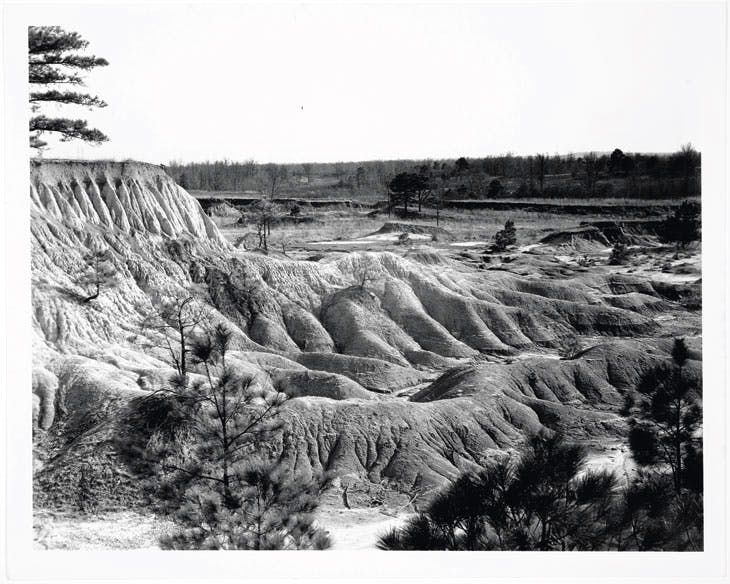 Erosion, Mississippi (1936), Walker Evans. Library of Congress press photograph, Collection David Campany