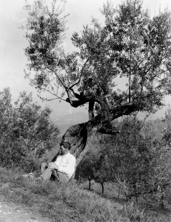 D.H. Lawrence beneath an olive tree at Villa Mirenda, San Polo Mosciano, c. 1926–27. Manuscripts and Special Collections, The University of Nottingham