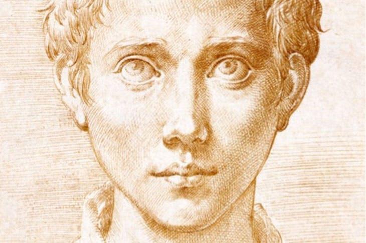 Head of a Young Man (detail; c. 1539–40), Girolamo Mazzola, called Parmigianino