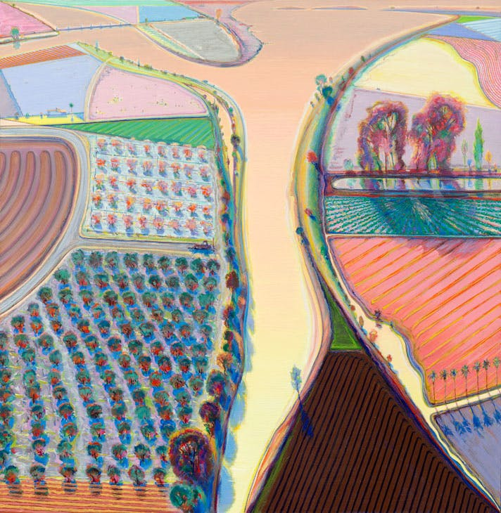 Y River (1998), Wayne Thiebaud. Photo: © John Bodkin, Dawkins Colour; courtesy White Cube; © Wayne Thiebaud/DACS, London/VAGA, New York 2017
